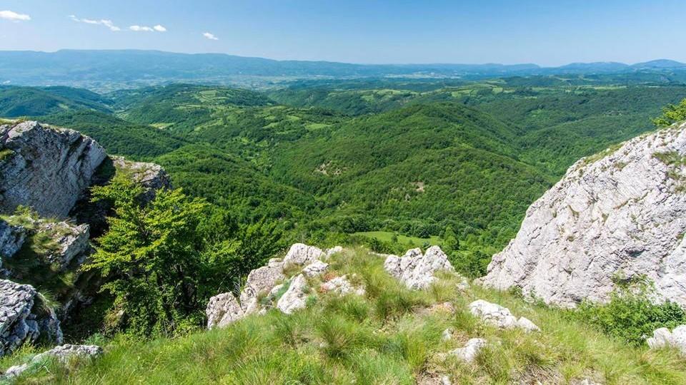 srbija/izleti/pesacka-tura-homoljske-planine
